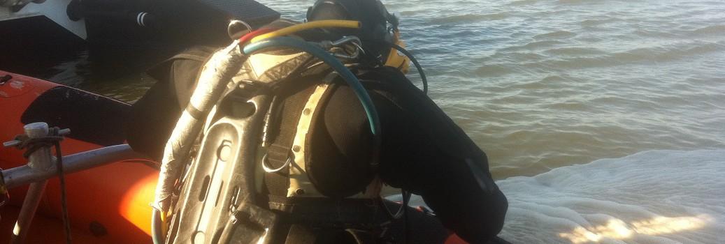 Duiker BMS Lauwersmeer en Waddenzee